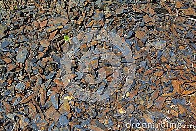 Grey with orange Small rocks texture, background. Summer. Susuman. Kolyma