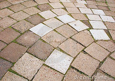 Grey pavement tiles with moss