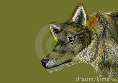 Grey Wolf on Neutral Green Background