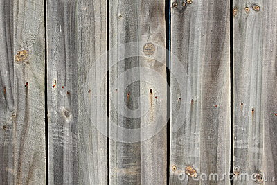 Grey wooden wall texture