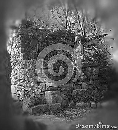 Greyscale Fairy Background