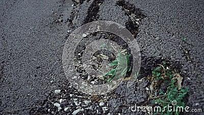 Grieta grande en el asfalto almacen de video