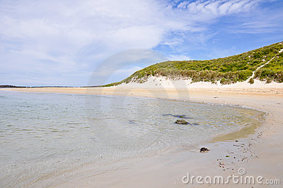 Griffiths Island in Port Fairy, Australia