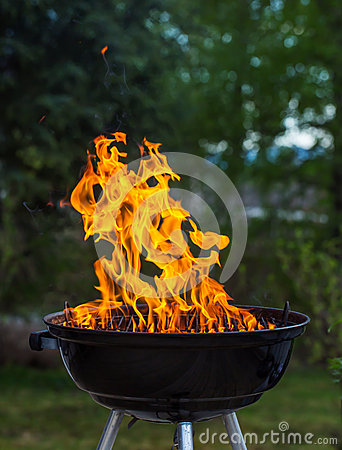Free Grill In Flames Stock Image - 32977331