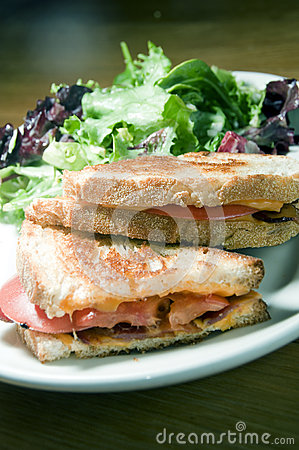 Grilled cheese sandwich bacon tomato vinaigrette salad and cole