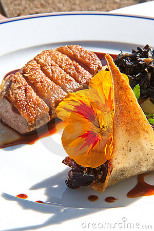 Free Grilled Duck Fillet Royalty Free Stock Photos - 7511208