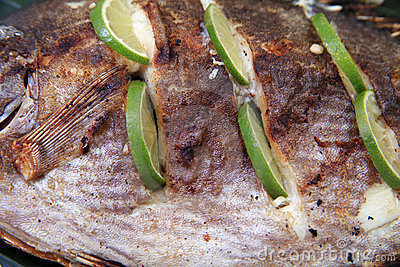 Grilled fish close up