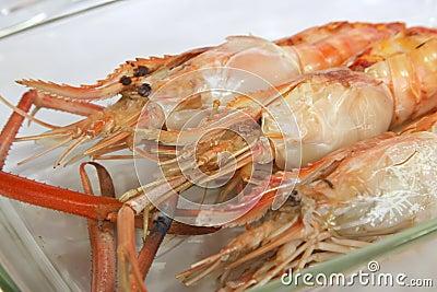 Grilled langoustine prawns