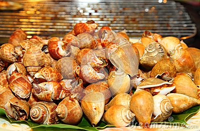 Grilled Spotted babylon shell on the banana leaf