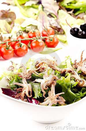 Grilled squid with salad
