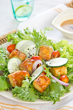 Free Grilled Tofu Salad With Sesame Dressing Royalty Free Stock Photography - 23966147