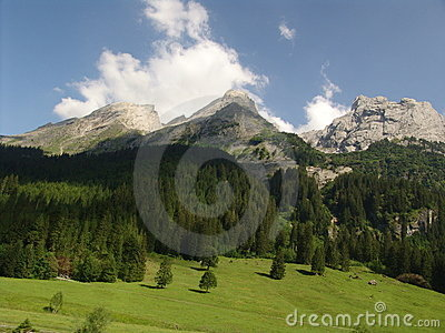 Grindelwal Wilderness Scene