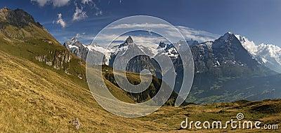 Grindelwald in Bern canton Switzerland