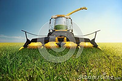Grinder for biomass