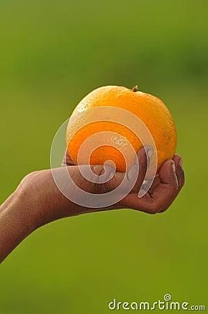 Gripping orange