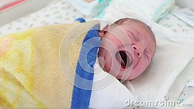 Grito recém-nascido do bebê filme