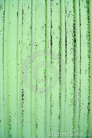 Gritty Textured Lime Green Wall