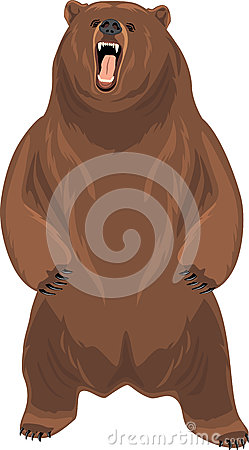 Free Grizzly Bear Stock Photo - 76299380