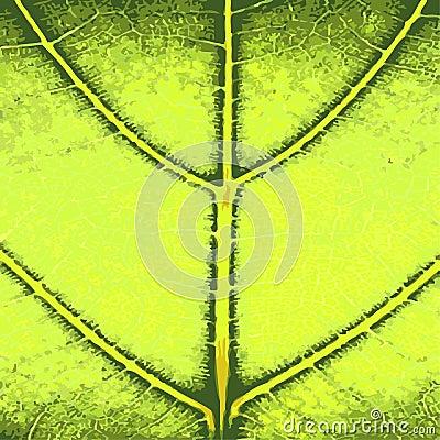 Grüner Blatt-Abschluss oben