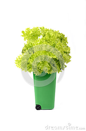 Grüner PlastikPapierkorb