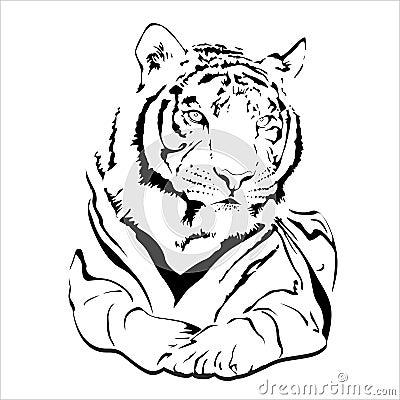 Große wilde Katze