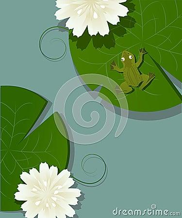 Groda och lotusblomma
