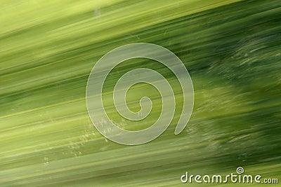 Groen Onduidelijk beeld als achtergrond