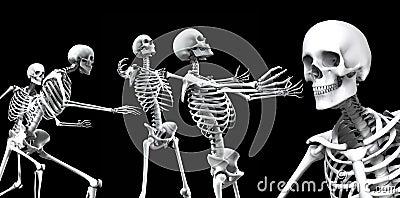 Groep 2 van het skelet