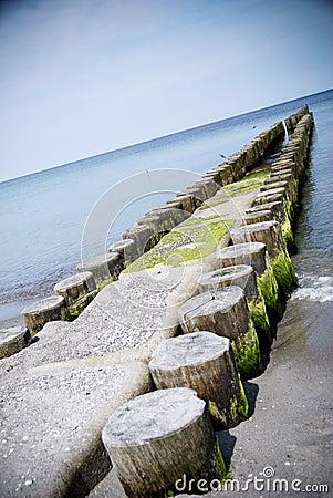 Groin baltic sea