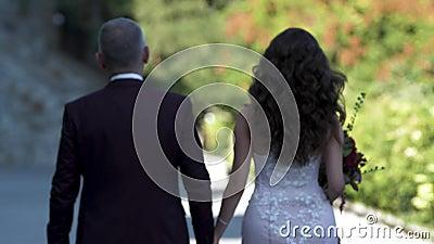 Groom и невеста идут вдоль пар переулка держа руки и смотря вперед видеоматериал