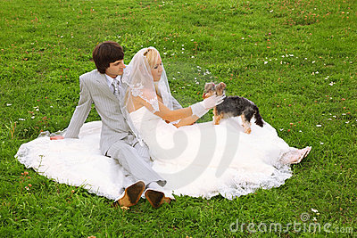 Groom and bride play with small dog
