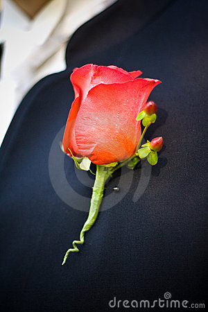 Groom s boutonniere