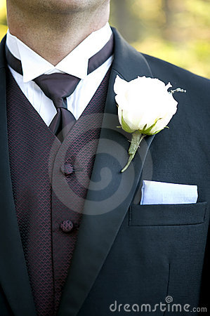 Free Groom S Suit Detail Royalty Free Stock Photos - 11819028