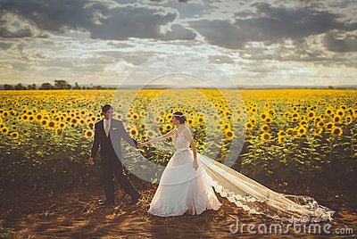 Groom Wearing Black Formal Coat Holding Bride In White Bridal Gown In Yellow And Green Sunflower Field During Daytime Free Public Domain Cc0 Image