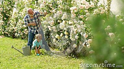 Grootvader met kleinzoon samen het tuinieren Ik houd van onze ogenblikken in het platteland - herinner tijd Het tuinieren hobby stock footage