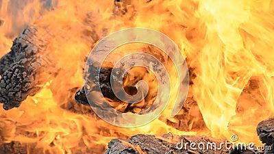 Gros feu d'artifice des brûlures banque de vidéos