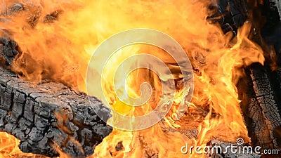 Grosse flamme en feu banque de vidéos