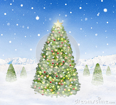 Group of Christmas Trees Outdoors Snowing