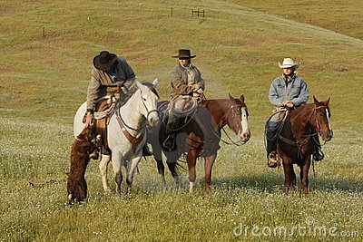 Group of Cowboys with Dog