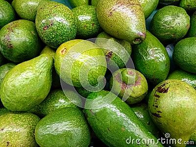 avocado fruit juicy fruit song