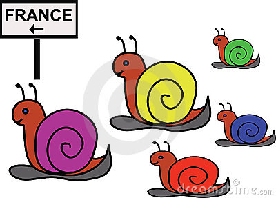 Group of funny snails (joke)