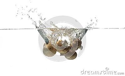 Mushroom splashing in water