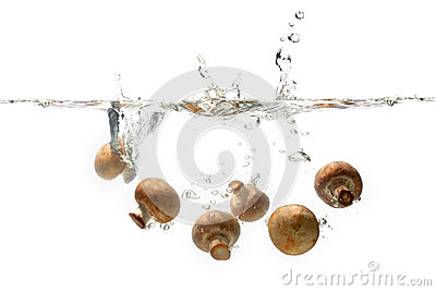 Mushroom splashing in water