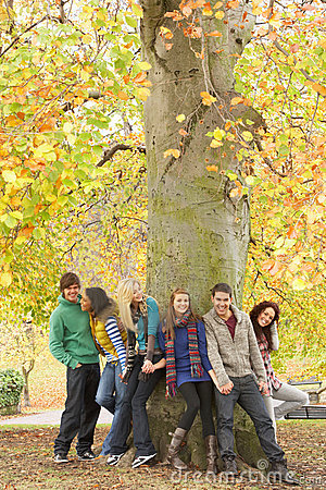Free Group Of Six Teenage Friends Leaning Against Tree Royalty Free Stock Photo - 13671525