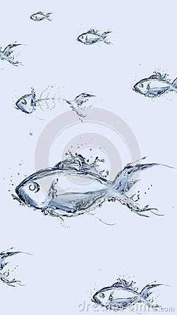 Free Group Of Water Fish Swimming Stock Images - 103187054