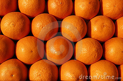 Group of oranges ready for juicing