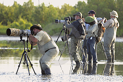 Group of photographers in water. Editorial Image