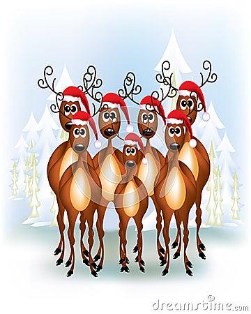 Group of Reindeers