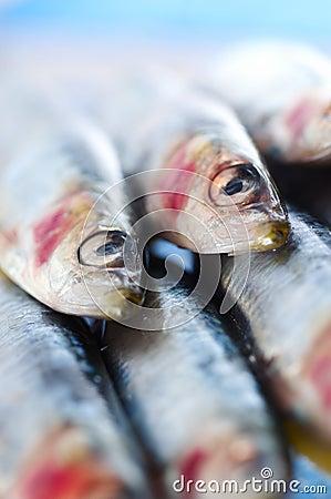 Group of sardines on lemon slices