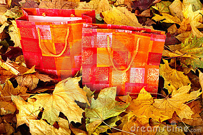 Group of shopping bag in fall foliage.